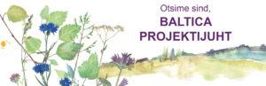 Otsime Baltica projektijuhti